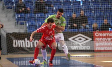 El Palma Futsal 1-2 Naturpellet Segovia, en imágenes